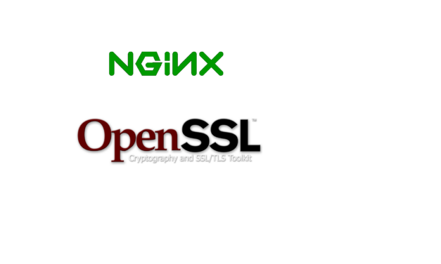 Nginx SSL example