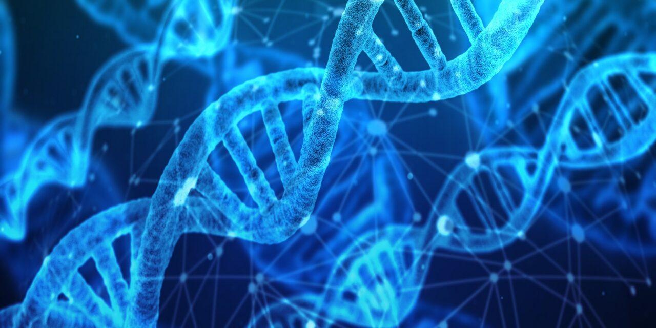 Understanding DNA – Your Genetic Codes Easily Explained